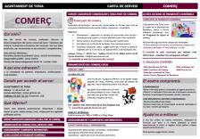 Exemple carta de serveis